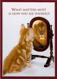 kitty-lion