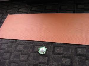 Yogi's mat